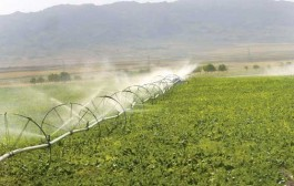 چالش طرح احیای اراضی کشاورزی خوزستان برای تامین آب