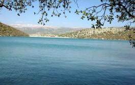 «رویداد پیوند آب و انرژی شریف» برگزار میشود