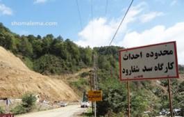 طرح سد سازی یک جنگل دیگر را نابود کرد
