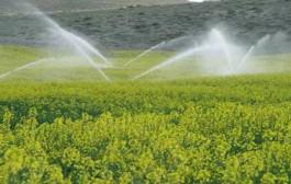 اجرای آبیاری تحتفشار در ۱۲۰هکتار از مزارع و باغهای میامی