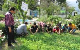 کشاورزی حفاظتی، راهکاری برای مقابله با بحران آب