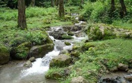 کمبود جدی ذخایر آب در آسیا تا ۲۰۵۰