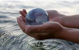 مدیرعامل شرکت آبفا اصفهان: راهکارهای جلوگیری از هدررفت آب مطلوب است