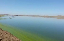 افزایش ۹۰ درصدی رهاسازی آب از سد مهاباد به سمت دریاچه ارومیه