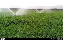 آب کشت تابستانه کشاورزان اهواز تامین است