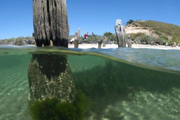 کاهش کیفیت آب دریا در سواحل «قروق»