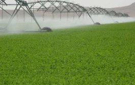 توسعه سیستم های نوین آبیاری راهکار احیای آب های زیر زمینی