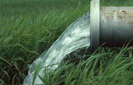 آب به ۵۰ درصد اراضی پاییزه نرسیده است/ سازمان آب اقدام کند