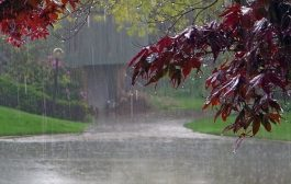 حجم بارشهای کشور به ۱۶۴ میلیمتر رسید/ بهبود ۱۸ درصدی بارندگیها از ابتدای سال تاکنون/ بارشها در ۲۲ استان کشور منفی است