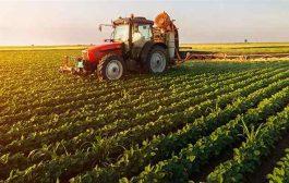 مدیریت تنش خشکی برای کاهش اثرات آن بر تولید محصولات زراعی